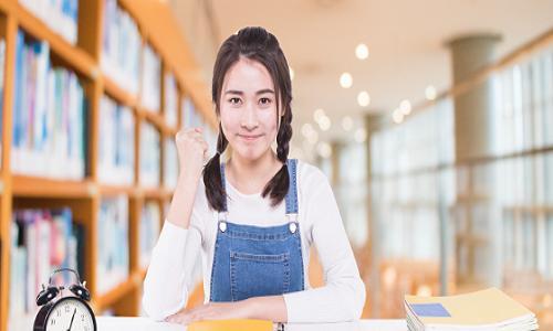 中小学文化课培训机构